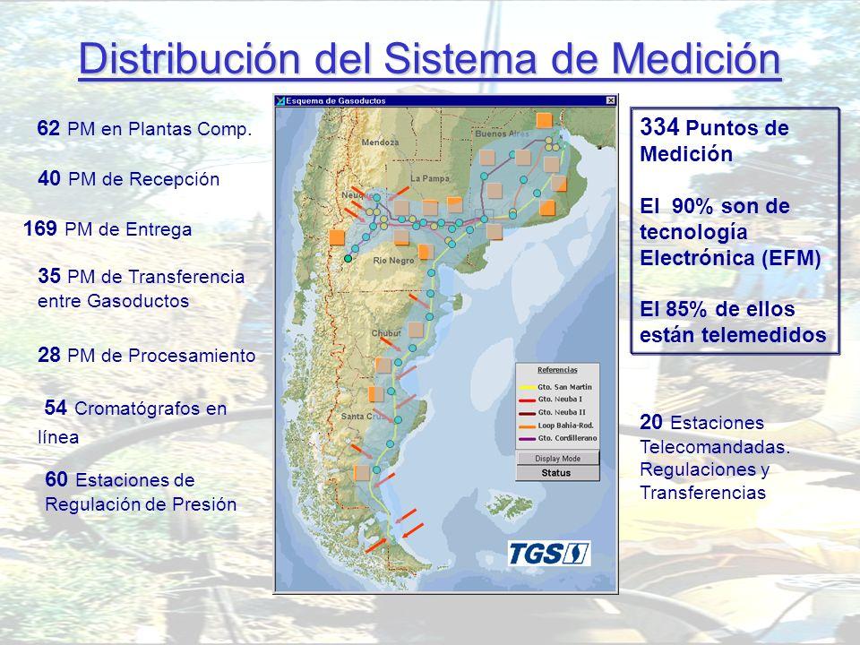 Gerencia de Medición y Calidad de Gas A desarrollar: Distribución del Sistema de Medición 54 Cromatógrafos en línea 40 PM de Recepción 169 PM de Entre