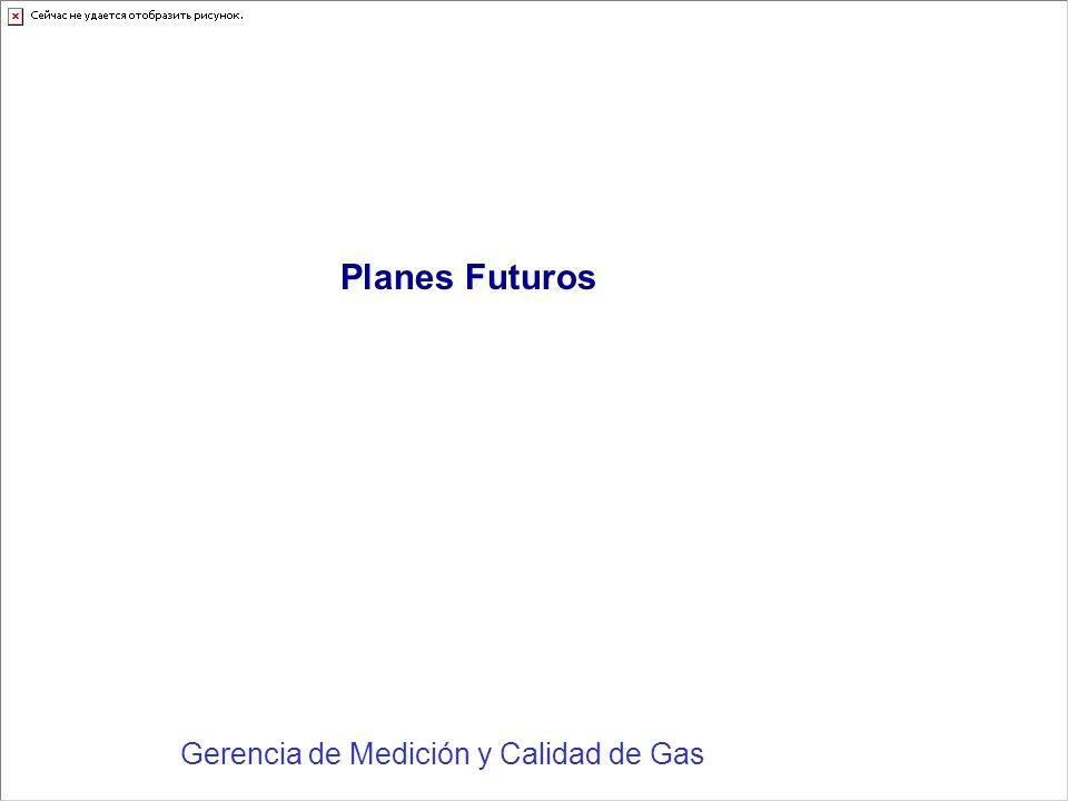 Gerencia de Medición y Calidad de Gas Planes Futuros