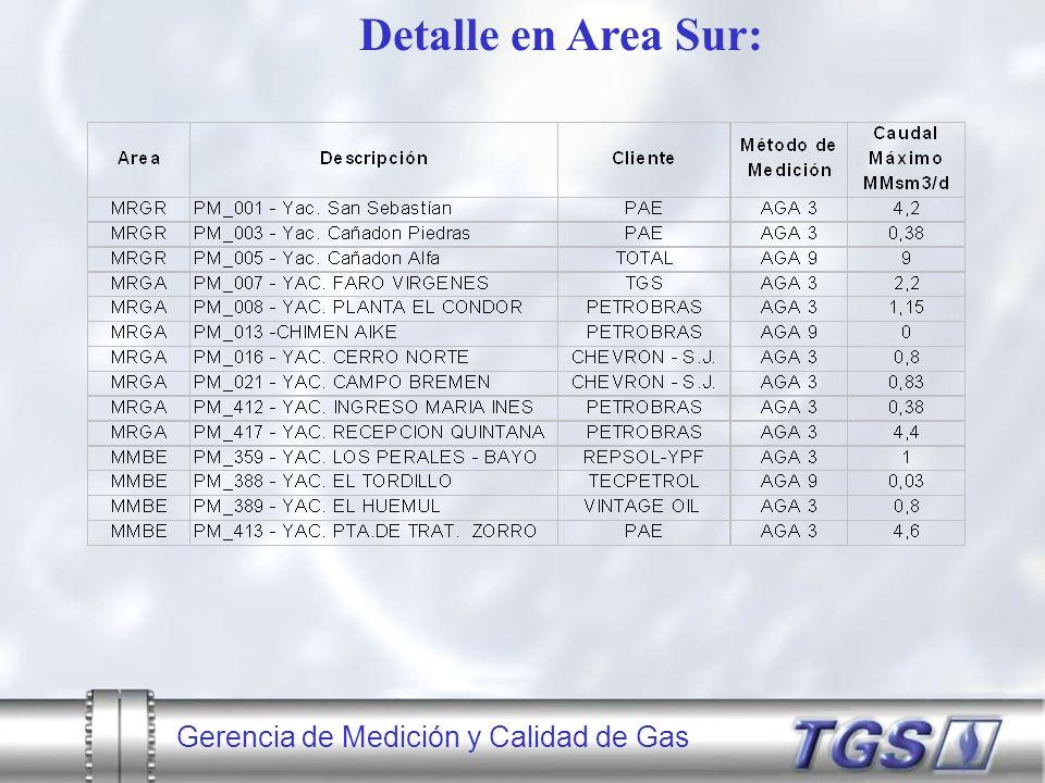 Gerencia de Medición y Calidad de Gas Detalle en Area Sur: