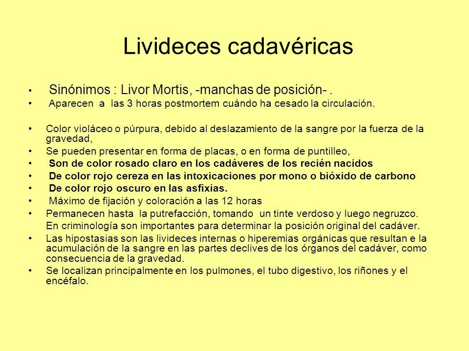 Livideces cadavéricas Sinónimos : Livor Mortis, -manchas de posición-. Aparecen a las 3 horas postmortem cuándo ha cesado la circulación. Color violác