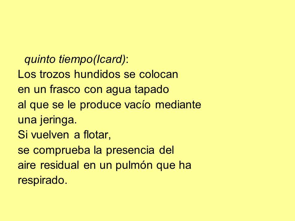 quinto tiempo(Icard): Los trozos hundidos se colocan en un frasco con agua tapado al que se le produce vacío mediante una jeringa. Si vuelven a flotar