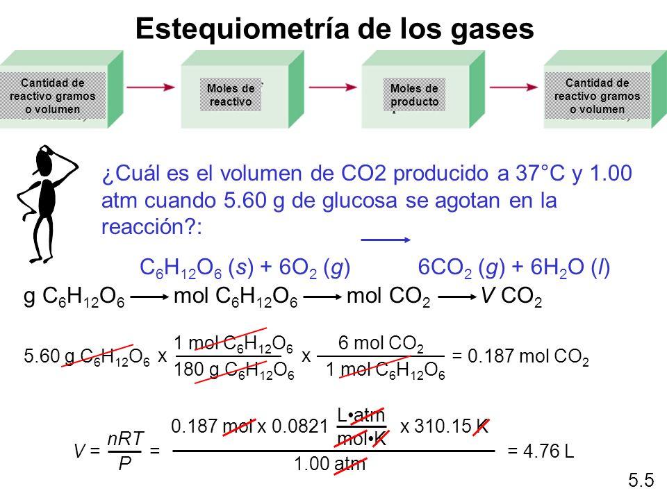 Estequiometría de los gases ¿Cuál es el volumen de CO2 producido a 37°C y 1.00 atm cuando 5.60 g de glucosa se agotan en la reacción?: C 6 H 12 O 6 (s