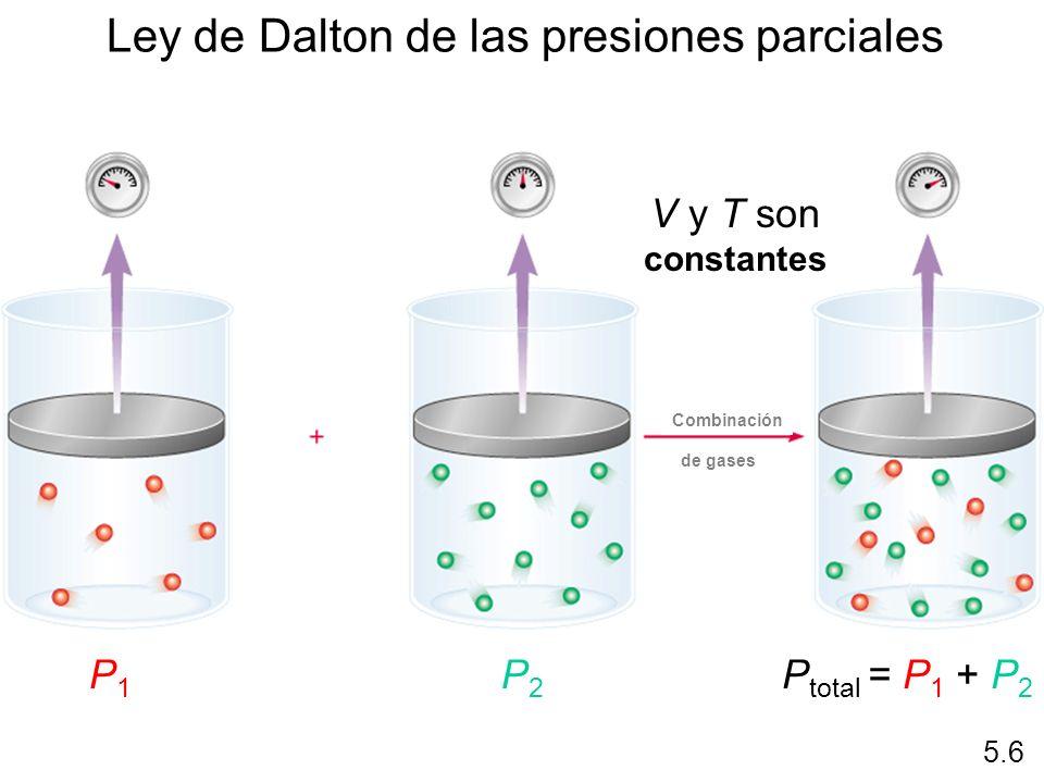 Ley de Dalton de las presiones parciales V y T son constantes P1P1 P2P2 P total = P 1 + P 2 5.6 Combinación de gases