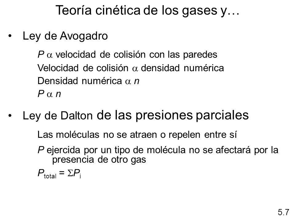 Teoría cinética de los gases y… Ley de Avogadro P velocidad de colisión con las paredes Velocidad de colisión densidad numérica Densidad numérica n P