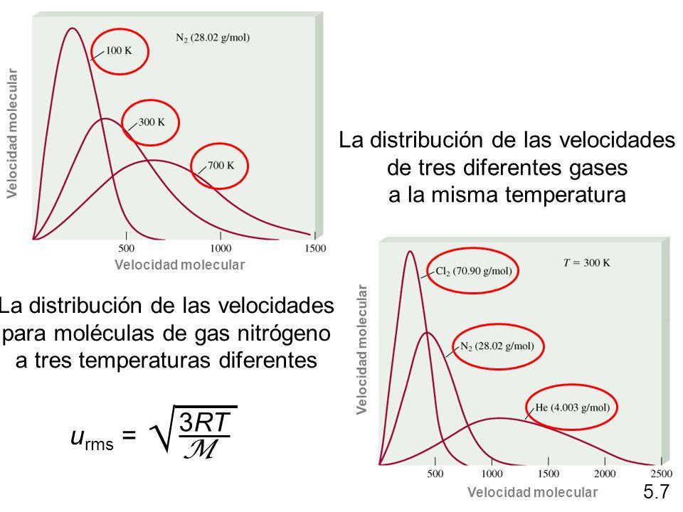 La distribución de las velocidades para moléculas de gas nitrógeno a tres temperaturas diferentes La distribución de las velocidades de tres diferente