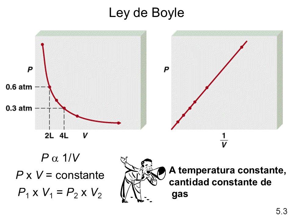 P 1/V P x V = constante P 1 x V 1 = P 2 x V 2 5.3 Ley de Boyle A temperatura constante, cantidad constante de gas