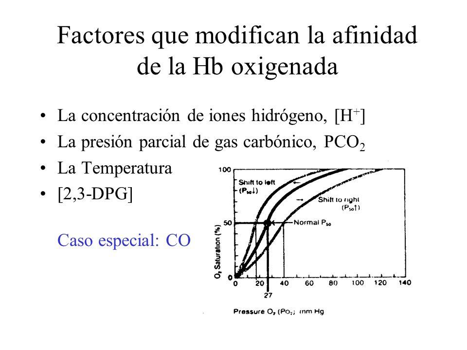 Factores que modifican la afinidad de la Hb oxigenada La concentración de iones hidrógeno, [H + ] La presión parcial de gas carbónico, PCO 2 La Temperatura [2,3-DPG] Caso especial: CO