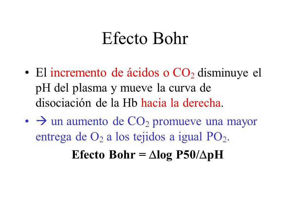 Efecto Bohr El incremento de ácidos o C O 2 disminuye el pH del plasma y mueve la curva de disociación de la Hb hacia la derecha.