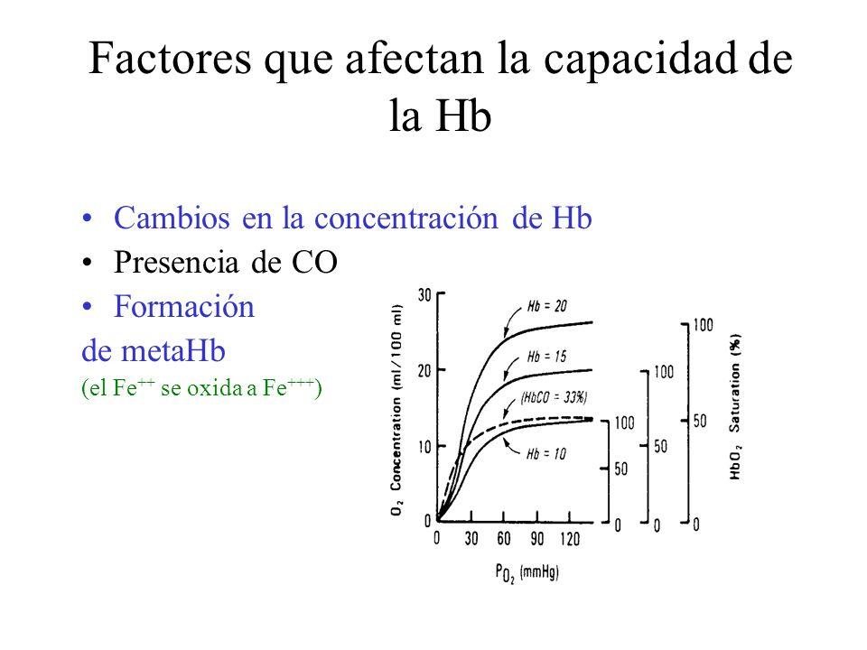 Factores que afectan la capacidad de la Hb Cambios en la concentración de Hb Presencia de CO Formación de metaHb (el Fe ++ se oxida a Fe +++ )