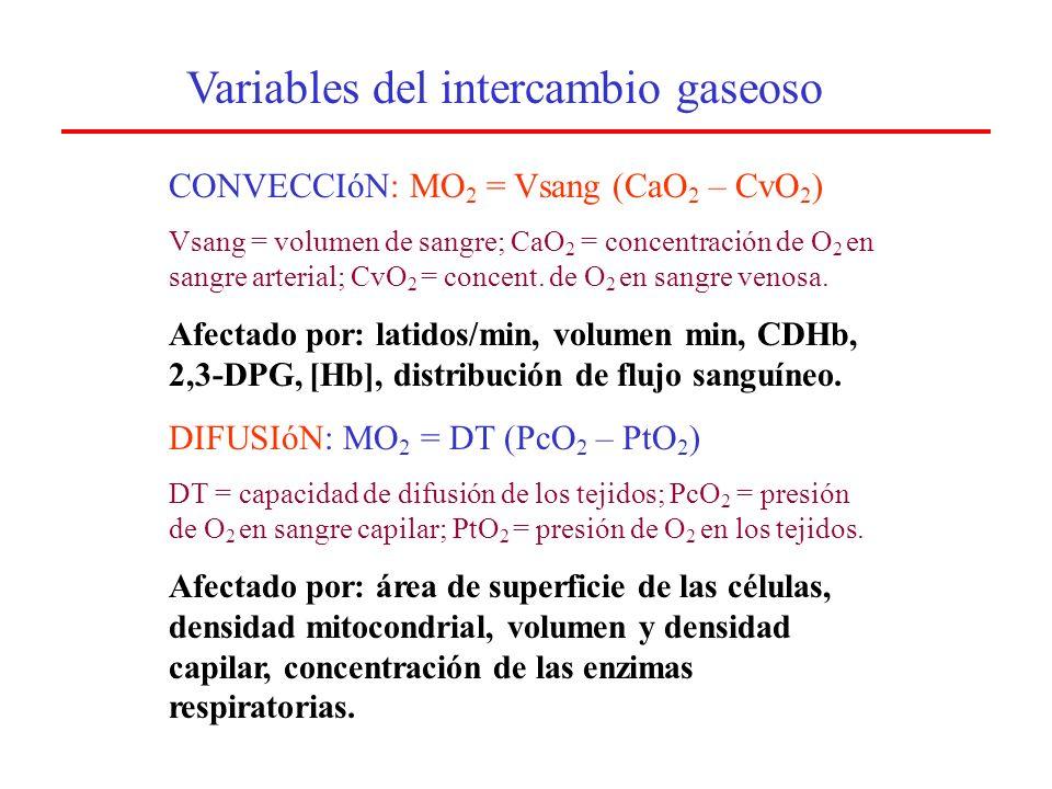 Aporte de Oxígeno ApO 2 = Q T.