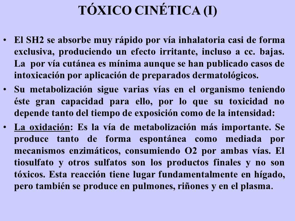 TÓXICO CINÉTICA (I) El SH2 se absorbe muy rápido por vía inhalatoria casi de forma exclusiva, produciendo un efecto irritante, incluso a cc. bajas. La
