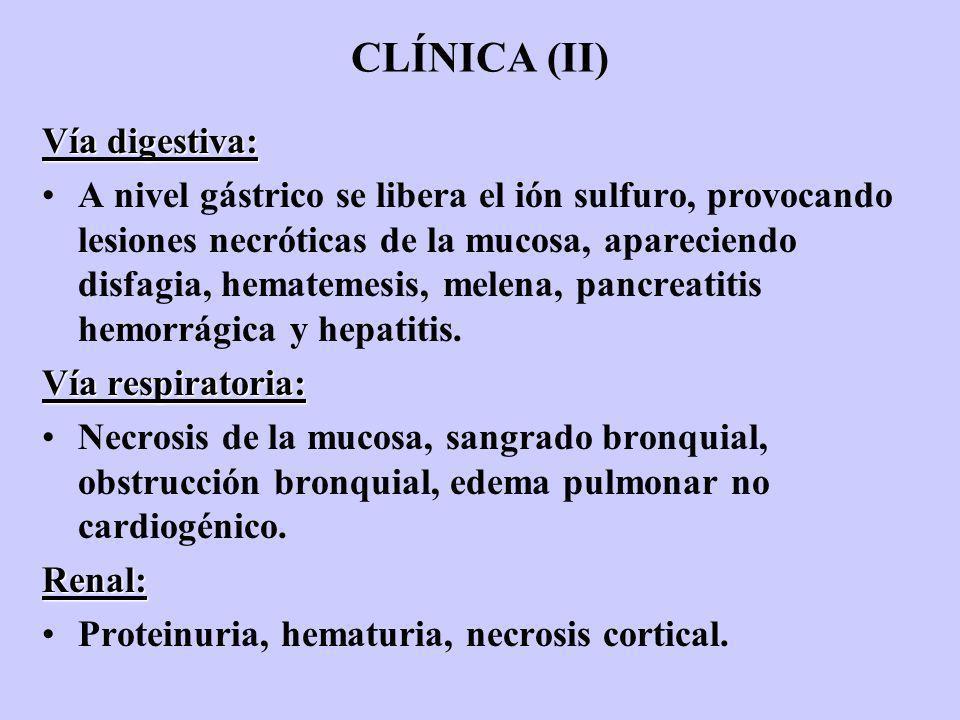 CLÍNICA (II) Vía digestiva: A nivel gástrico se libera el ión sulfuro, provocando lesiones necróticas de la mucosa, apareciendo disfagia, hematemesis,