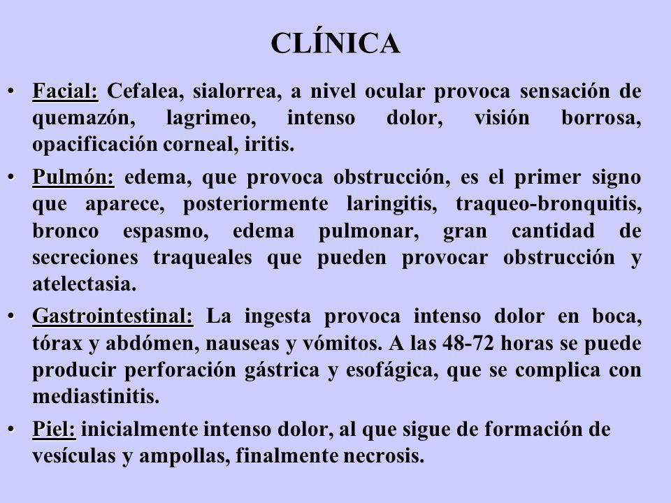 CLÍNICA Facial:Facial: Cefalea, sialorrea, a nivel ocular provoca sensación de quemazón, lagrimeo, intenso dolor, visión borrosa, opacificación cornea