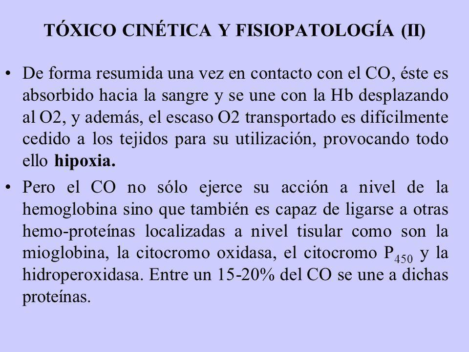 TÓXICO CINÉTICA Y FISIOPATOLOGÍA (II) De forma resumida una vez en contacto con el CO, éste es absorbido hacia la sangre y se une con la Hb desplazand
