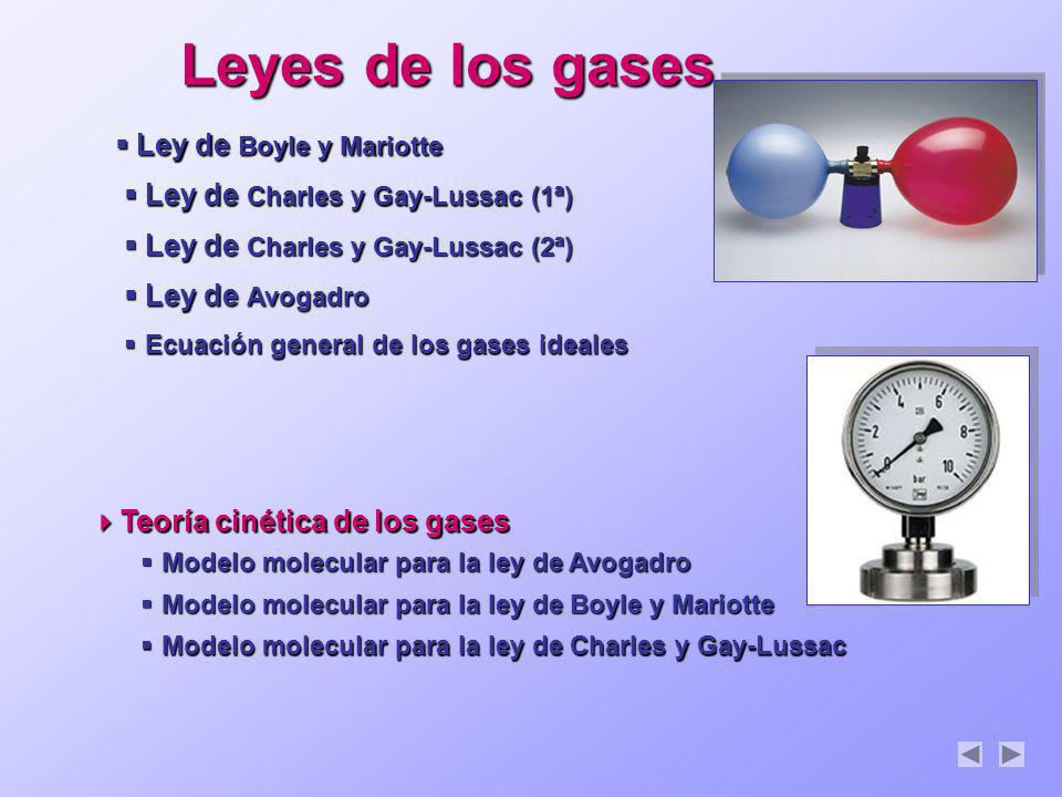Leyes de los gases Modelo molecular para la ley de Avogadro Modelo molecular para la ley de Avogadro Modelo molecular para la ley de Avogadro Modelo m