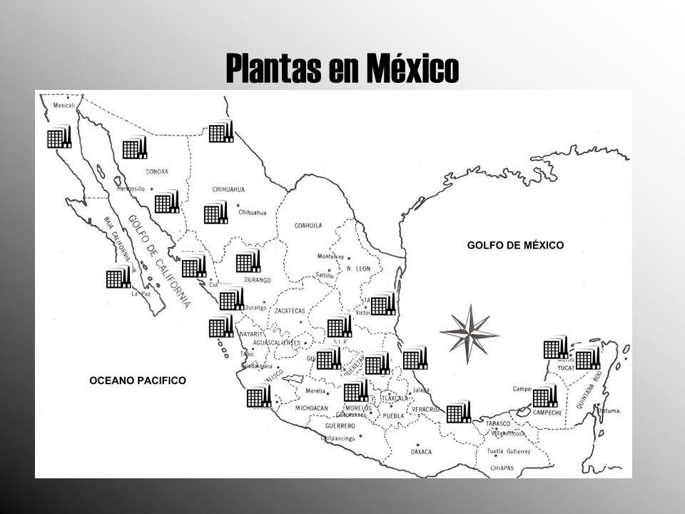 Plantas en México (CONT.) Nombre de la central Número de unidades Fecha de entrada en operación Capacidad efectiva instalada (MW) Ubicación Altamira4 19-May-1976800Altamira, Tamaulipas Benito Juárez (Samalayuca ) 2 02-Abr-1985316Cd.