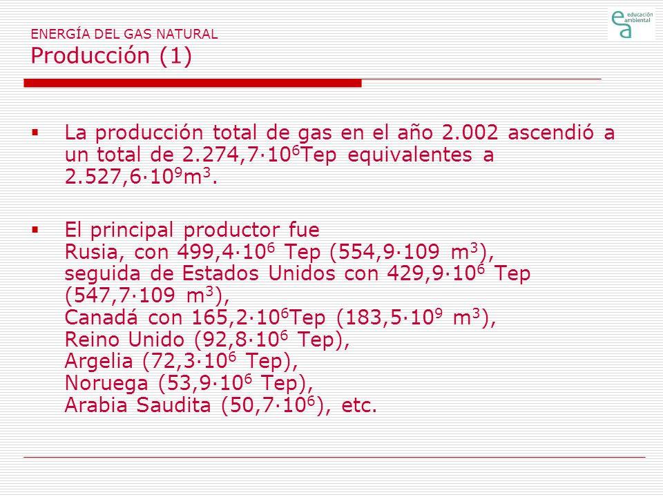 ENERGÍA DEL GAS NATURAL Producción (1) La producción total de gas en el año 2.002 ascendió a un total de 2.274,7·10 6 Tep equivalentes a 2.527,6·10 9