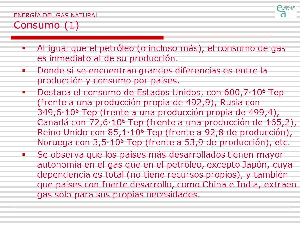 ENERGÍA DEL GAS NATURAL Consumo (1) Al igual que el petróleo (o incluso más), el consumo de gas es inmediato al de su producción.