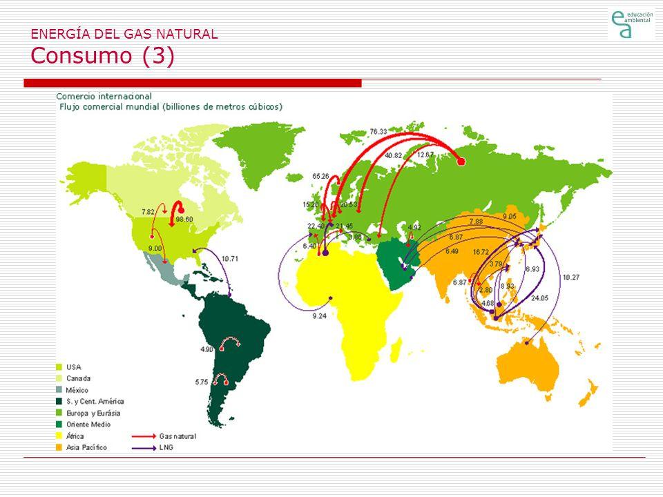 ENERGÍA DEL GAS NATURAL Consumo (3)