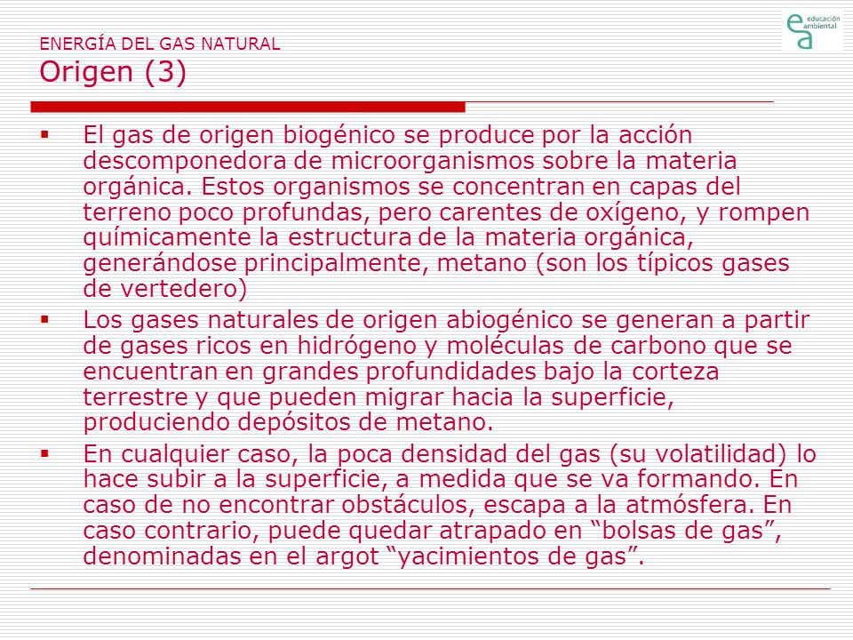 ENERGÍA DEL GAS NATURAL Origen (3) El gas de origen biogénico se produce por la acción descomponedora de microorganismos sobre la materia orgánica. Es