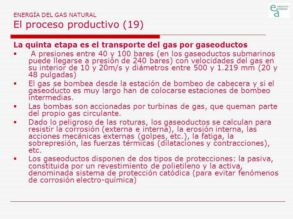 ENERGÍA DEL GAS NATURAL El proceso productivo (19) La quinta etapa es el transporte del gas por gaseoductos A presiones entre 40 y 100 bares (en los gaseoductos submarinos puede llegarse a presión de 240 bares) con velocidades del gas en su interior de 10 y 20m/s y diámetros entre 500 y 1.219 mm (20 y 48 pulgadas) El gas se bombea desde la estación de bombeo de cabecera y si el gaseoducto es muy largo han de colocarse estaciones de bombeo intermedias.