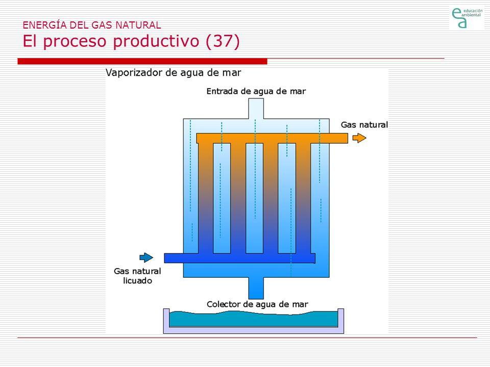 ENERGÍA DEL GAS NATURAL El proceso productivo (37)