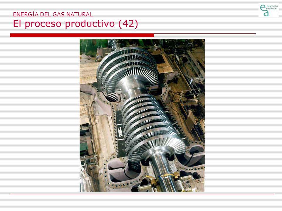ENERGÍA DEL GAS NATURAL El proceso productivo (42)
