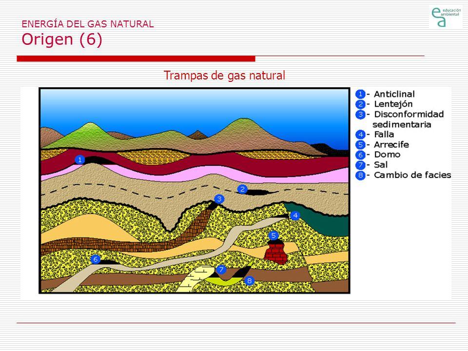 ENERGÍA DEL GAS NATURAL El coste de la energía del gas (4) En el año 2003 el coste del gas secomponía de 1,42 céntimos de euro a la extracción y tratamiento en origen del gas; 0,29 euros a transmisión y almacenamiento y 1,04 euros a la distribución.