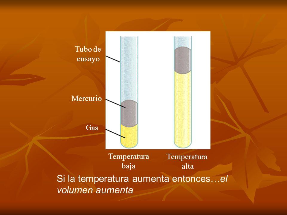 TEORÍA CINÉTICA MOLECULAR TEORÍA CINÉTICA MOLECULAR Postulados: Postulados: -Los gases están compuestos por partículas pequeñísimas llamadas moléculas.