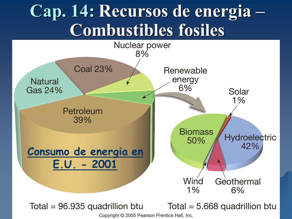 Cap. 14: Recursos de energia – Combustibles fosiles Consumo de energia en E.U. - 2001