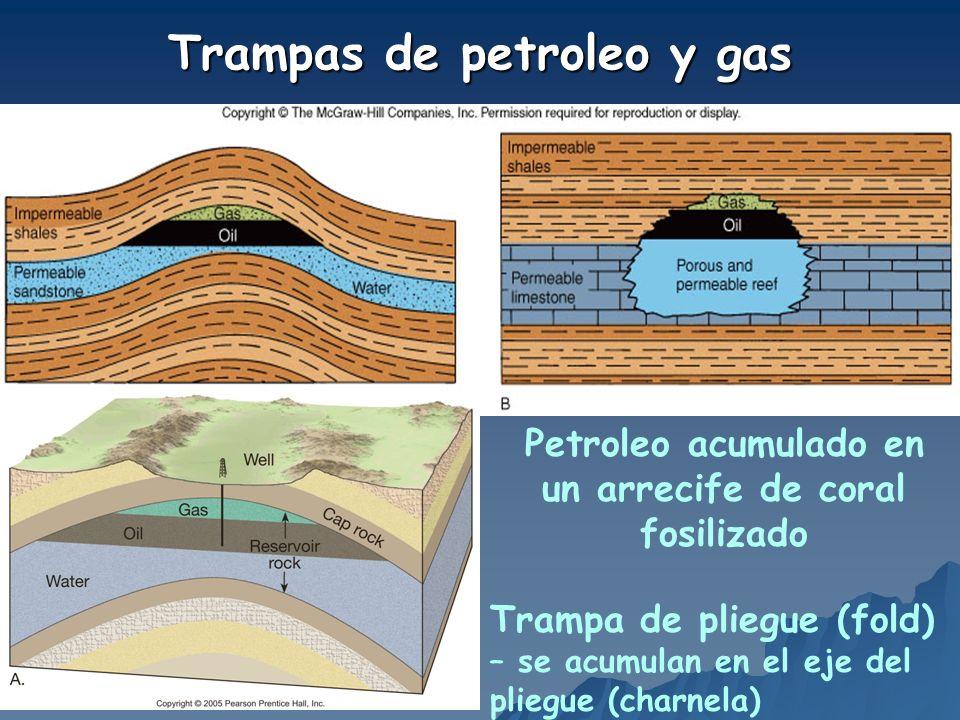 Trampas de petroleo y gas Trampa de pliegue (fold) – se acumulan en el eje del pliegue (charnela) Petroleo acumulado en un arrecife de coral fosilizad