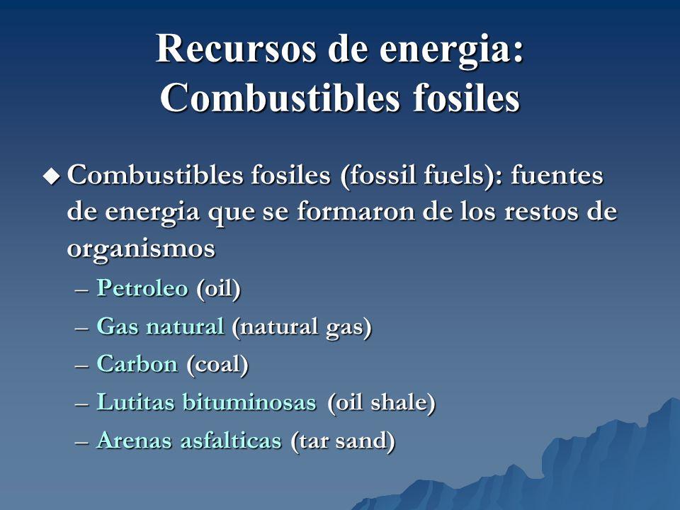 Combustibles fosiles (fossil fuels): fuentes de energia que se formaron de los restos de organismos Combustibles fosiles (fossil fuels): fuentes de en