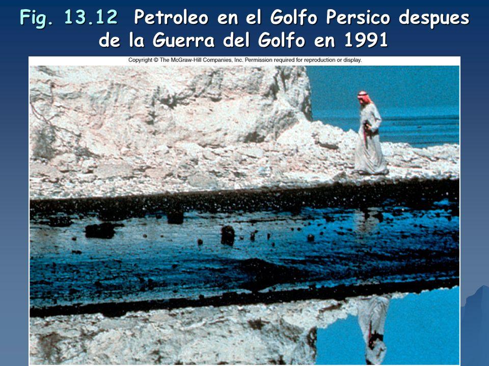 Fig. 13.12 Petroleo en el Golfo Persico despues de la Guerra del Golfo en 1991
