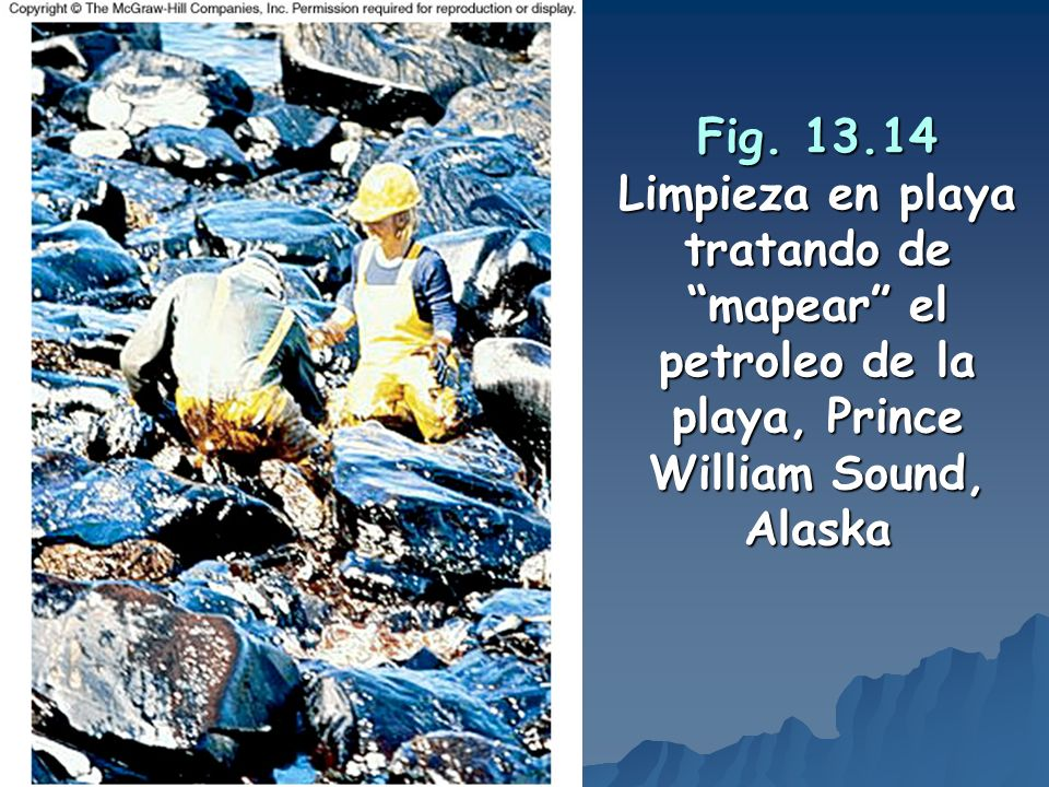Fig. 13.14 Limpieza en playa tratando de mapear el petroleo de la playa, Prince William Sound, Alaska