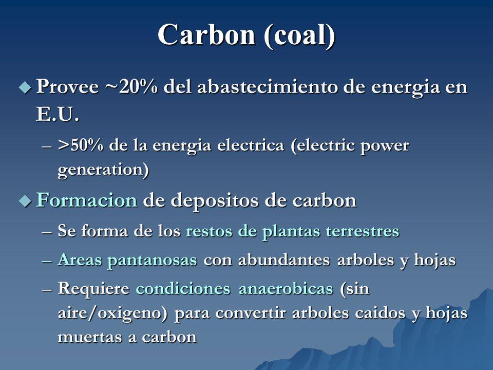 Provee ~20% del abastecimiento de energia en E.U. Provee ~20% del abastecimiento de energia en E.U. –>50% de la energia electrica (electric power gene