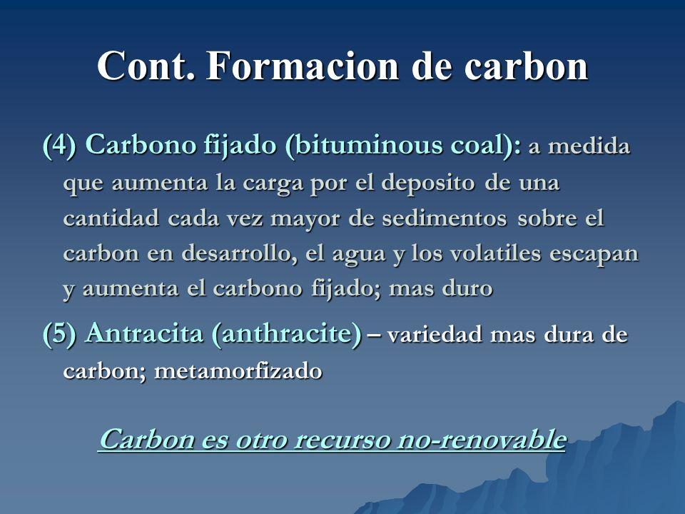 Cont. Formacion de carbon (4) Carbono fijado (bituminous coal): a medida que aumenta la carga por el deposito de una cantidad cada vez mayor de sedime