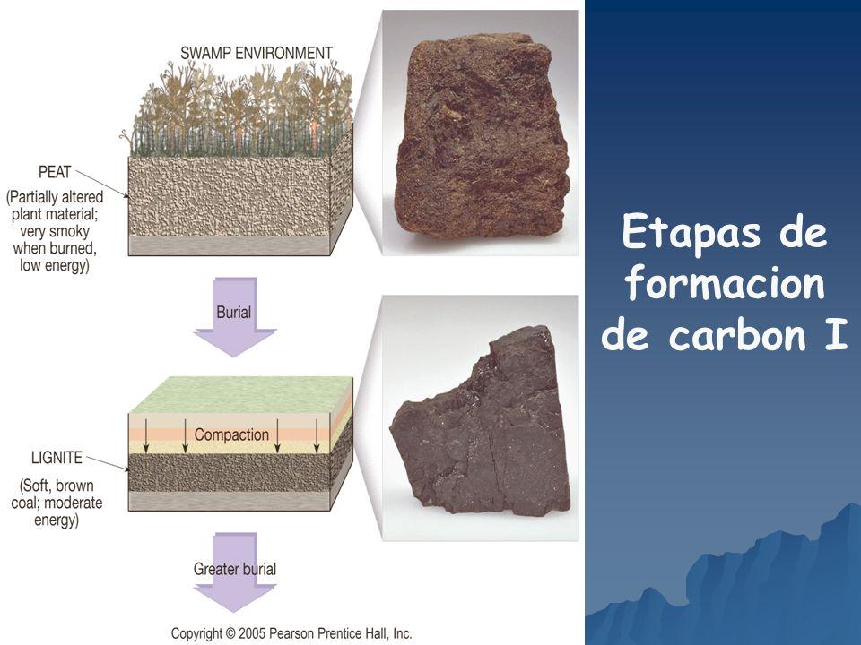 Etapas de formacion de carbon I
