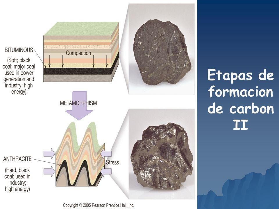 Etapas de formacion de carbon II