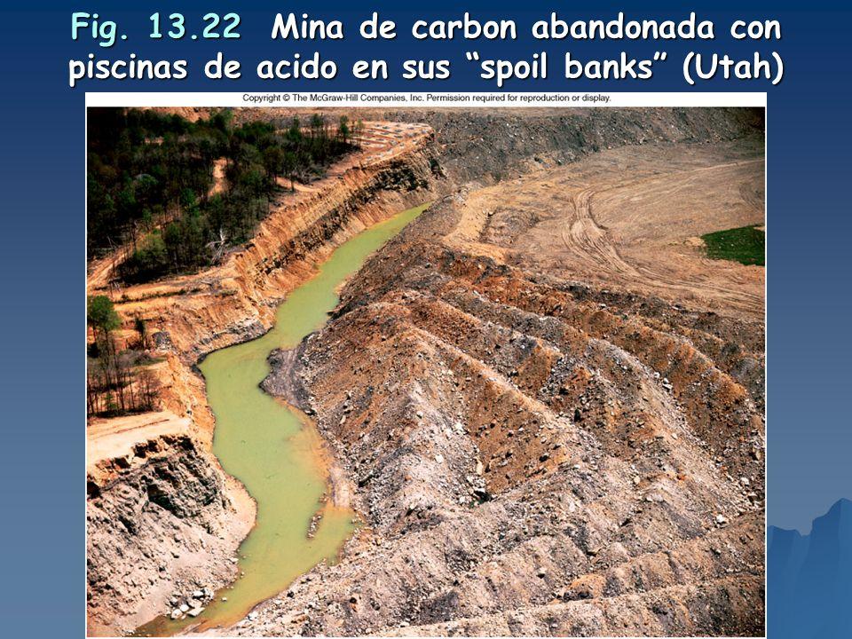 Fig. 13.22 Mina de carbon abandonada con piscinas de acido en sus spoil banks (Utah)