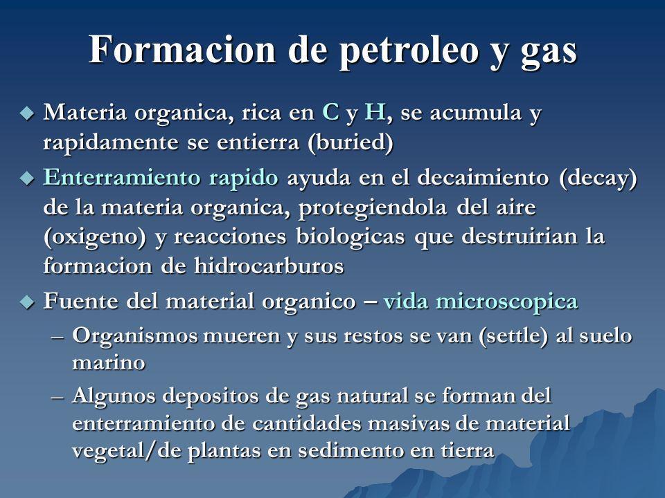 Materia organica, rica en C y H, se acumula y rapidamente se entierra (buried) Materia organica, rica en C y H, se acumula y rapidamente se entierra (