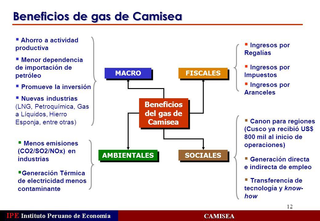 12 Beneficios de gas de Camisea CAMISEA MACRO Ahorro a actividad productiva Menor dependencia de importación de petróleo Promueve la inversión Nuevas