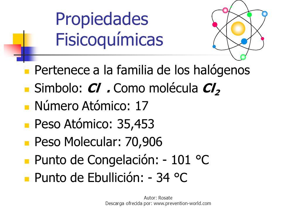 Autor: Rosate Descarga ofrecida por: www.prevention-world.com Transporte de Cloro El cloro es transportado como un gas comprimido en estado líquido, p