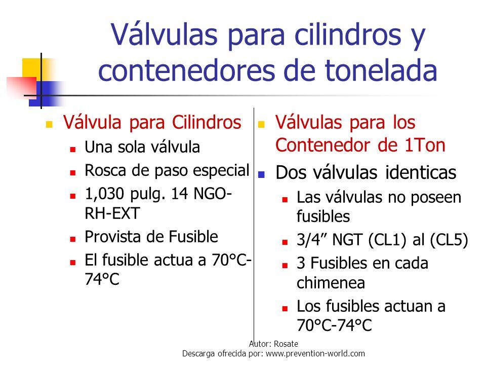 Autor: Rosate Descarga ofrecida por: www.prevention-world.com Marcas del Cilindro 106A500X Cerca de la chimenea de válvulas: Serial N° DOT Símbolo de