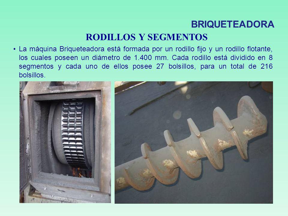 RODILLOS Y SEGMENTOS La máquina Briqueteadora está formada por un rodillo fijo y un rodillo flotante, los cuales poseen un diámetro de 1.400 mm. Cada