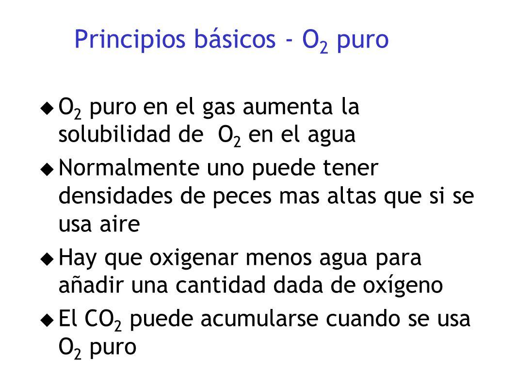 Principios básicos - O 2 puro u O 2 puro en el gas aumenta la solubilidad de O 2 en el agua u Normalmente uno puede tener densidades de peces mas alta