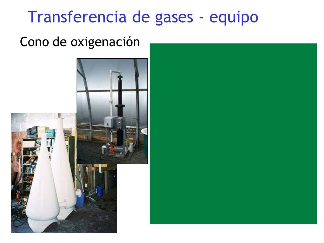 Cono de oxigenación Transferencia de gases - equipo