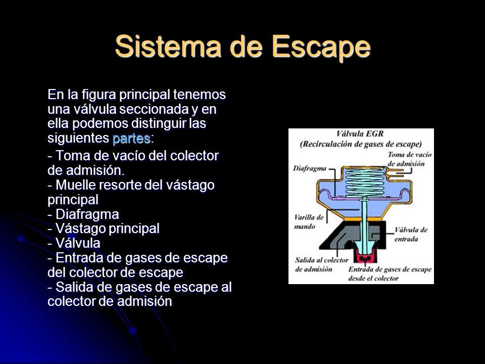Sistema de Escape En la figura principal tenemos una válvula seccionada y en ella podemos distinguir las siguientes partes: - Toma de vacío del colector de admisión.