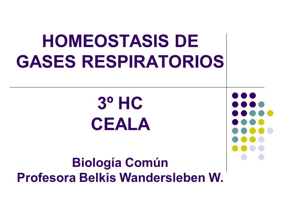 HOMEOSTASIS DE GASES RESPIRATORIOS 3º HC CEALA Biología Común Profesora Belkis Wandersleben W.