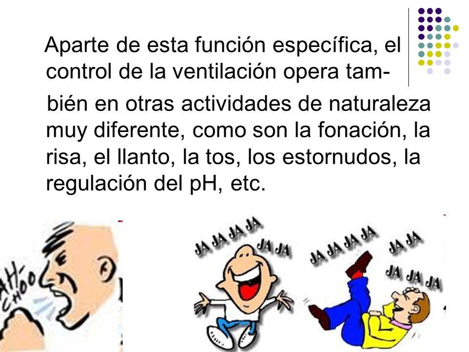 Aparte de esta función específica, el control de la ventilación opera tam- bién en otras actividades de naturaleza muy diferente, como son la fonación