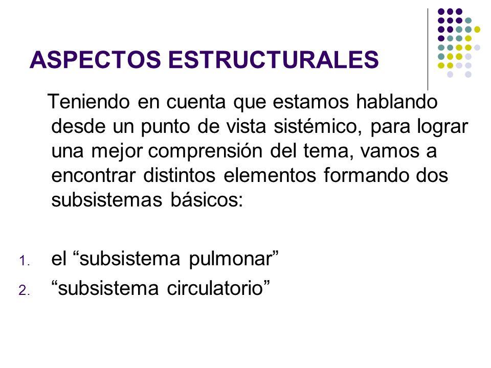 5. Respiración Celular